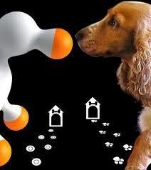 juguetes sexuales para perros